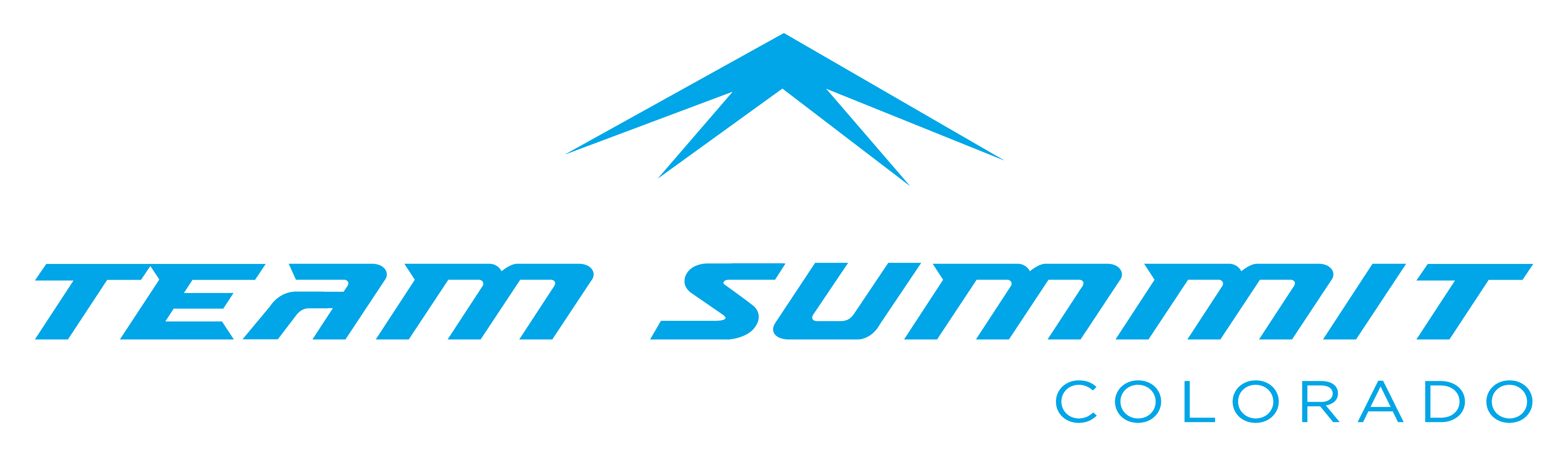 TEAMSUMMIT LOGO_blue-03.png